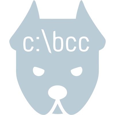 Boxer Computer Consulting Logo